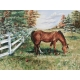 """""""Greener Pastures"""" Oil on Canvas"""