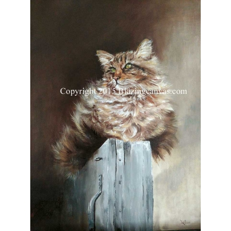 """""""Lilly"""" Oil Painting of Maine Coon Cat"""